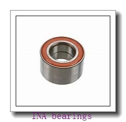 INA SL024880 cylindrical roller bearings