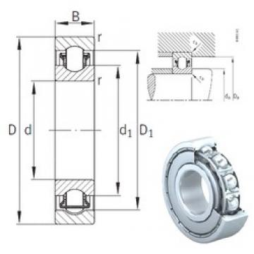 INA BXRE204-2Z needle roller bearings