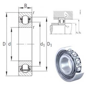 INA BXRE204 needle roller bearings