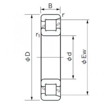 NACHI NF 208 cylindrical roller bearings