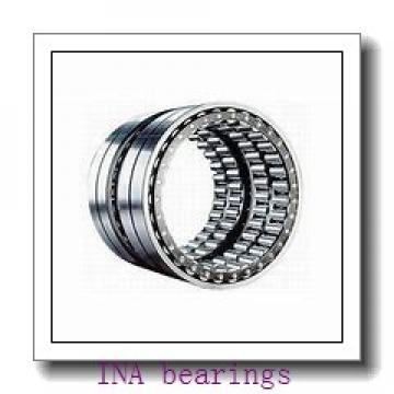 INA SL182209 cylindrical roller bearings
