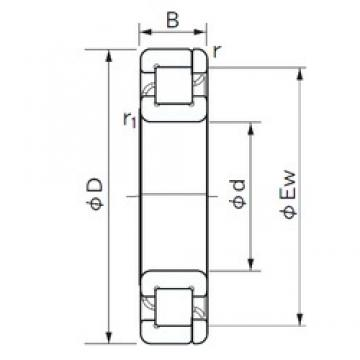 NACHI NP 1052 cylindrical roller bearings